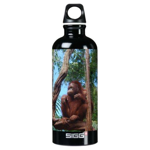 Wildlife Photography Orangutan in Borneo Rainfores SIGG Traveler 0.6L Water Bottle