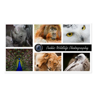 Wildlife Photography Photographer Double-Sided Standard Business Cards (Pack Of 100)