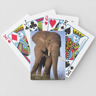 Wildlife Playing Cards