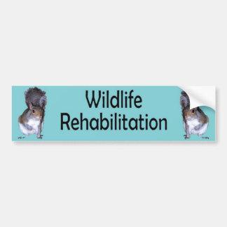 Wildlife Rehabilitation 2 Squirrels-Blue Bumper Sticker