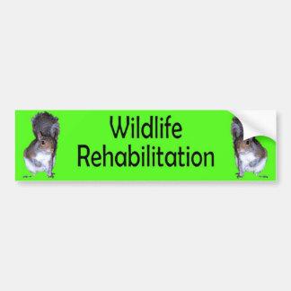 Wildlife Rehabilitation 2 Squirrels-Green Car Bumper Sticker