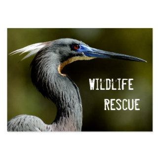 Wildlife Rescue Business Card Templates