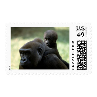 Wildlife Set - Primates 11 Postage