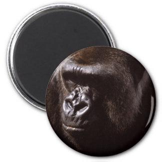 Wildlife Set - Primates 13 Magnet