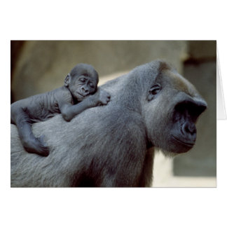 Wildlife Set - Primates 3 Card