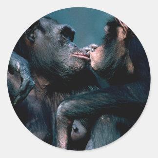 Wildlife Set - Primates 6 Classic Round Sticker