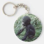 Wildlife Set - Primates 8 Basic Round Button Keychain