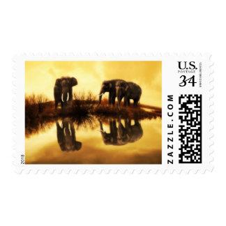 Wildlife Stamp Elephant Medium