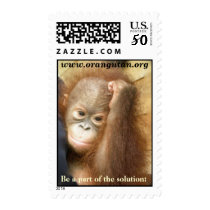 Wildlife Stamps: Charity for endangered species Postage