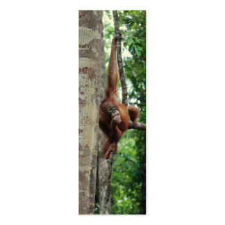 Wildlife Tree Hugger Mini Bookmarks Double-Sided Mini Business Cards (Pack Of 20)