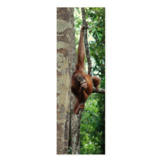 Wildlife Tree Hugger Mini Bookmarks Mini Business Card