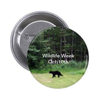 Wildlife Week-Black Bear Button