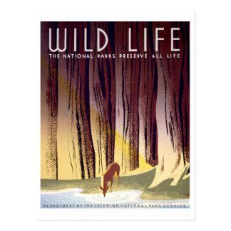 Wildlife WPA Poster (Deer) Postcard
