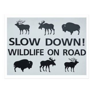 wildlifesign postcard