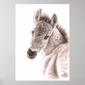 Wildly Horse Foal - Wildpony foal Poster