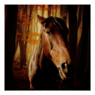 Wildly Horses Poster