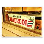Wildroot Photo