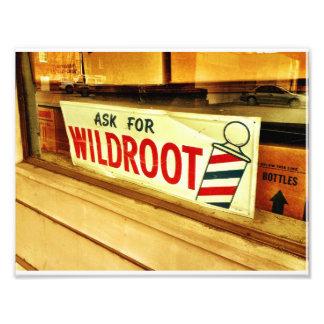 Wildroot Arte Fotográfico