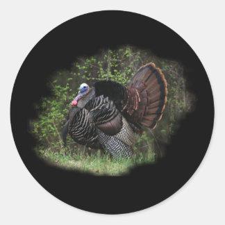 WildTurkey on the prowl Classic Round Sticker