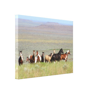 WildWest Mustangs Wrapped Canvas