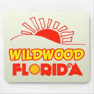 Wildwood, Florida Mousepads