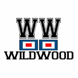 Wildwood. Photo Sculptures