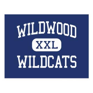 Wildwood - Wildcats - High - Wildwood Florida Postcard