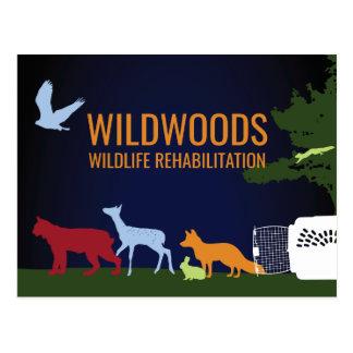 """Wildwoods """"Release"""" Postcard"""