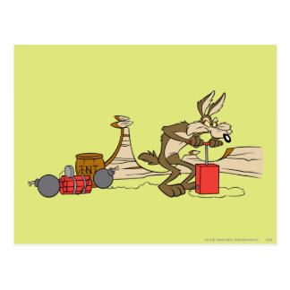 Wile E Coyote Acme Products 11 2 Postcard