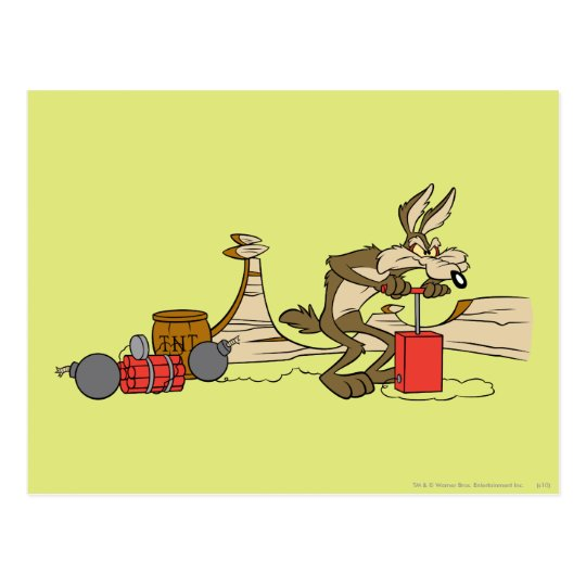 Wile E Coyote also known simply as the Coyote and the Road Runner are a duo of cartoon characters from the Looney Tunes and Merrie Melodies series of cartoons