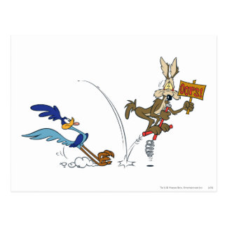 Wile E Coyote and ROAD RUNNER™ Acme Products 7 Postcard