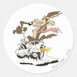 Wile E. Coyote Crazy Glance Stickers