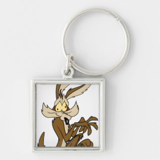 Wile E. Coyote Derp Keychain