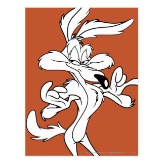Wile E. Coyote Looking Pleased Postcard