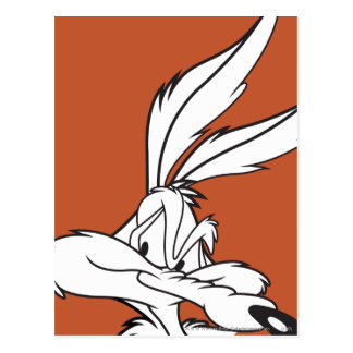 Wile E. Coyote Looking sneaky Postcard
