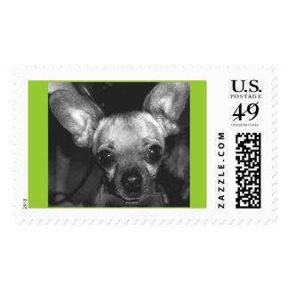 Wiley Postage