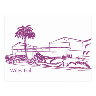 Wiley Postcard
