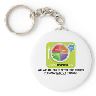 Will A Plate Lead To Better Food Choices Pyramid Keychain