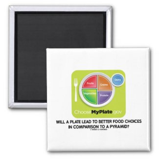Will A Plate Lead To Better Food Choices Pyramid Refrigerator Magnets