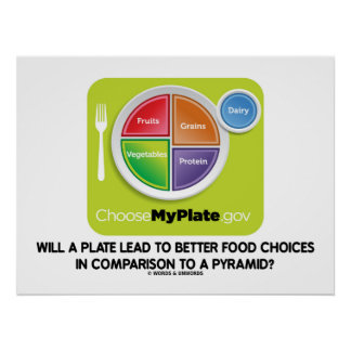Will A Plate Lead To Better Food Choices Pyramid Poster