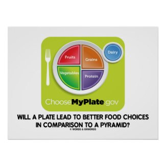 Will A Plate Lead To Better Food Choices Pyramid Print