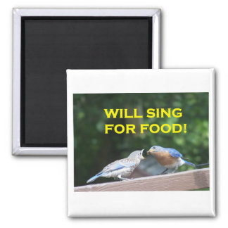 Will Sing For Food Magnet
