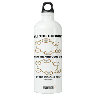 Will The Economy Follow The Virtuous Cycle Vicious SIGG Traveler 1.0L Water Bottle