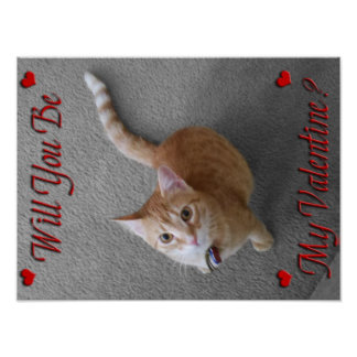 Will You Be My Valentine Cat Poster