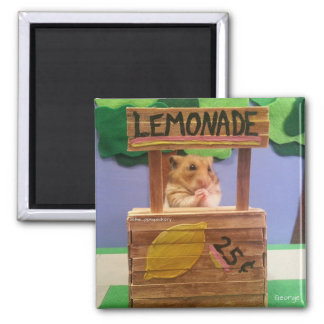 Will You Buy Some Lemonade? Pretty Please? 2 Inch Square Magnet