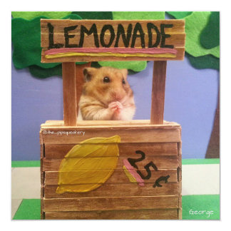 Will You Buy Some Lemonade? Pretty Please? Custom Announcements