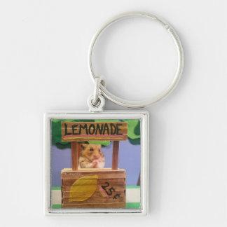 Will You Buy Some Lemonade? Pretty Please? Key Chain