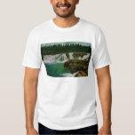 Willamette Falls in Portland T Shirt
