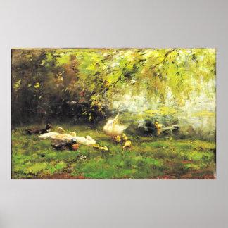 Willem Maris - cielo del pato Impresiones