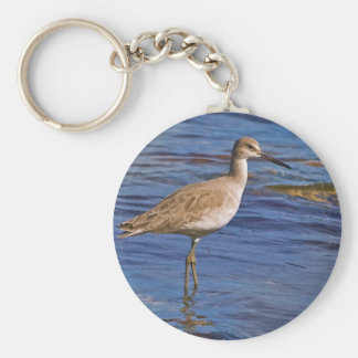 Willet Bird Wading Wildlife  Keychain